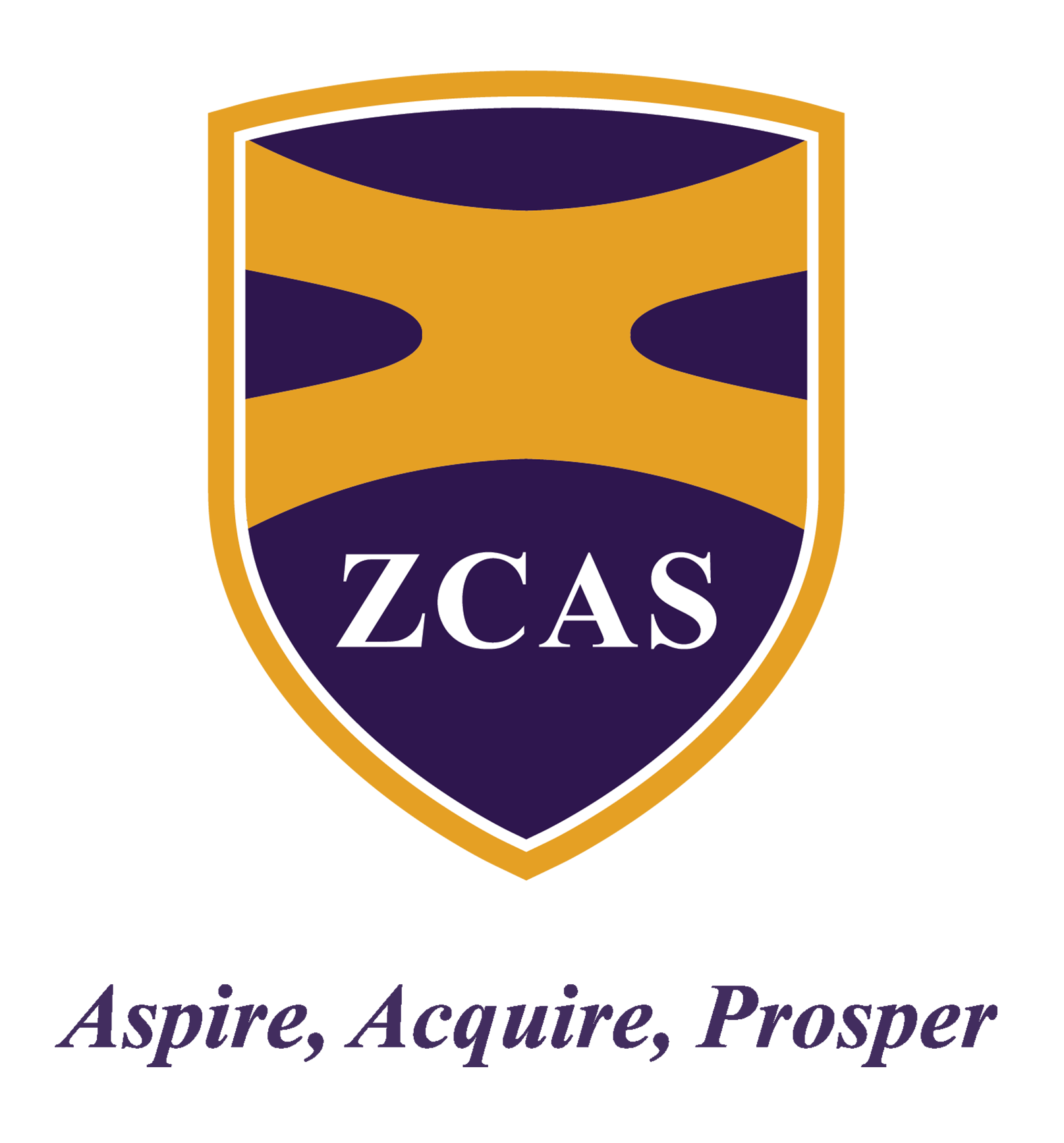 ZCAS Professional
